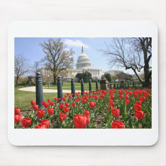 US Capitol spring flower Mouse Pad