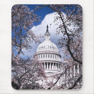 US Capitol with cherry blossoms, Washington DC Mouse Pad