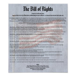 US Constitution Bill of Rights History Classroom Poster
