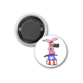 US Election Magnet