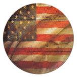 US Flag 1103 Plate