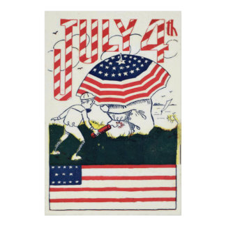 US Flag Fireworks Firecracker Prank Posters