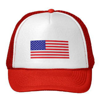 US Flag Flat - Truckers Hat