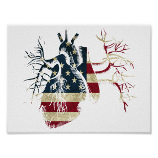 US Flag in Real heart Poster