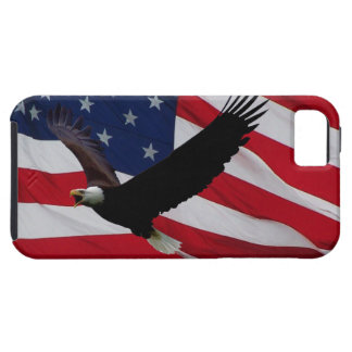 US Flag on Windy Day iPhone SE/5/5s Case