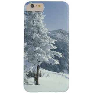 US, NH, Snow covered trees Trails Snoeshoe Barely There iPhone 6 Plus Case