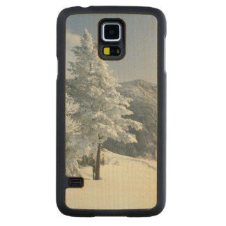 US, NH, Snow covered trees Trails Snoeshoe Carved Maple Galaxy S5 Slim Case
