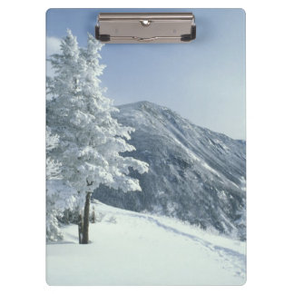 US, NH, Snow covered trees Trails Snoeshoe Clipboard