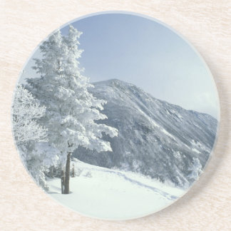 US, NH, Snow covered trees Trails Snoeshoe Drink Coaster