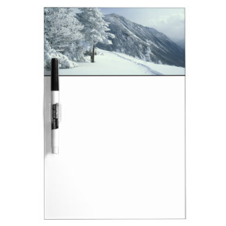 US, NH, Snow covered trees Trails Snoeshoe Dry Erase Board