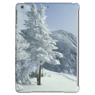 US, NH, Snow covered trees Trails Snoeshoe iPad Air Case