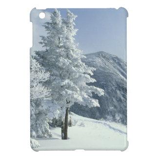 US, NH, Snow covered trees Trails Snoeshoe iPad Mini Cover