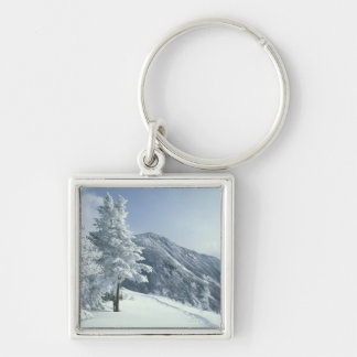 US, NH, Snow covered trees Trails Snoeshoe Keychain