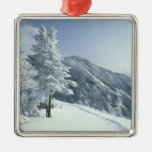 US, NH, Snow covered trees Trails Snoeshoe Square Metal Christmas Ornament