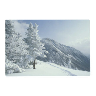 US, NH, Snow covered trees Trails Snoeshoe Placemat