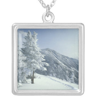 US, NH, Snow covered trees Trails Snoeshoe Silver Plated Necklace