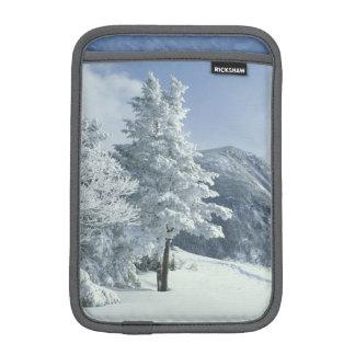 US, NH, Snow covered trees Trails Snoeshoe Sleeve For iPad Mini