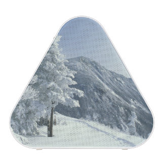US, NH, Snow covered trees Trails Snoeshoe Speaker