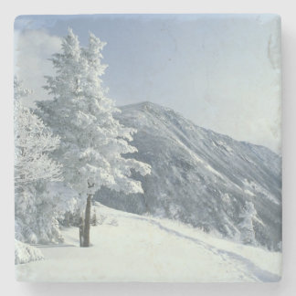 US, NH, Snow covered trees Trails Snoeshoe Stone Coaster