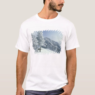 US, NH, Snow covered trees Trails Snoeshoe T-Shirt