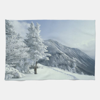 US, NH, Snow covered trees Trails Snoeshoe Towels