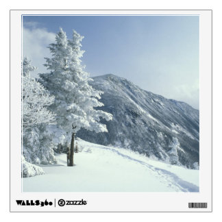 US, NH, Snow covered trees Trails Snoeshoe Wall Decal