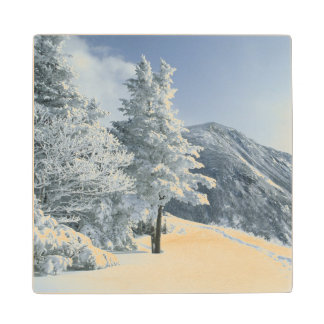 US, NH, Snow covered trees Trails Snoeshoe Wood Coaster