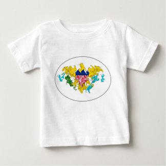 US Virgin Islands Gnarly Flag T-Shirt