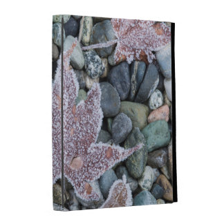 Us, Wa, Bainbridge Island. Early Morning Frost 2 iPad Folio Case