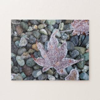Us, Wa, Bainbridge Island. Early Morning Frost 2 Jigsaw Puzzle