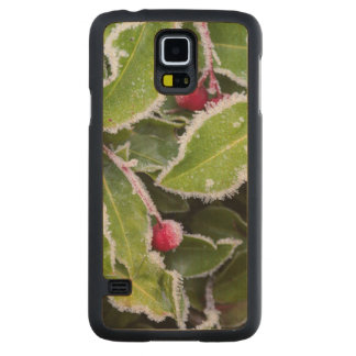 Us, Wa, Bainbridge Island. Early Morning Frost Carved Maple Galaxy S5 Slim Case