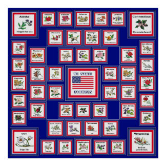 USA 50 STATE FLOWERS BLUE/558 POSTER