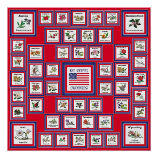 USA 50 STATE FLOWERS RED/560 POSTER