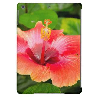 USA, Alabama, Theodore Near Mobile 4 Cover For iPad Air
