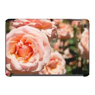 USA, Alabama, Theodore Near Mobile 5 iPad Mini Cases