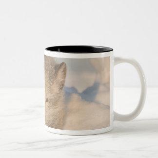 USA, Alaska, 1002 Coastal Plain of the ANWR. An 2 Two-Tone Coffee Mug
