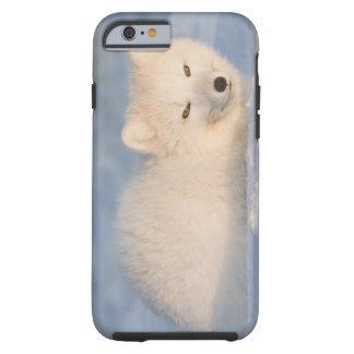 USA, Alaska, 1002 Coastal Plain of the ANWR. An iPhone 6 Case