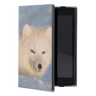 USA, Alaska, 1002 Coastal Plain of the ANWR. An iPad Mini Case