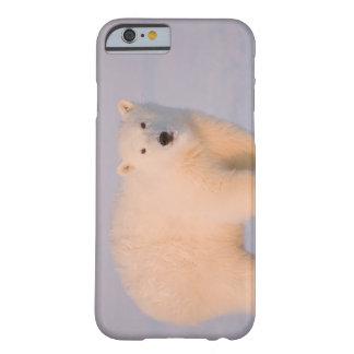 USA, Alaska, 1002 Coastal Plain of the Arctic 2 Barely There iPhone 6 Case