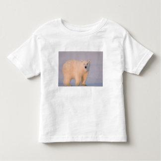 USA, Alaska, 1002 Coastal Plain of the Arctic 2 Toddler T-shirt