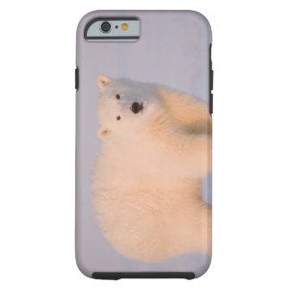 USA, Alaska, 1002 Coastal Plain of the Arctic 2 Tough iPhone 6 Case