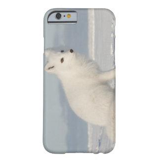 USA, Alaska, 1002 Coastal Plain of the Arctic 4 iPhone 6 Case