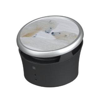 USA, Alaska, 1002 Coastal Plain of the Arctic Bluetooth Speaker