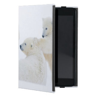 USA, Alaska, 1002 Coastal Plain of the Arctic Case For iPad Mini