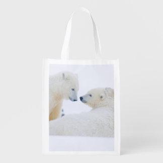 USA, Alaska, 1002 Coastal Plain of the Arctic Grocery Bag