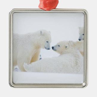 USA, Alaska, 1002 Coastal Plain of the Arctic Square Metal Christmas Ornament