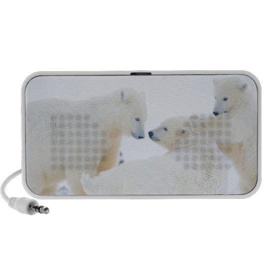 USA, Alaska, 1002 Coastal Plain of the Arctic Portable Speaker