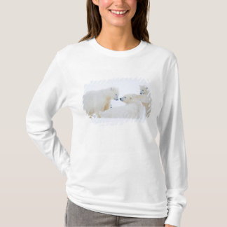 USA, Alaska, 1002 Coastal Plain of the Arctic T-Shirt