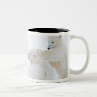USA, Alaska, 1002 Coastal Plain of the Arctic Two-Tone Coffee Mug