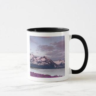 USA, Alaska, Alsek River Valley. View of Alsek Mug